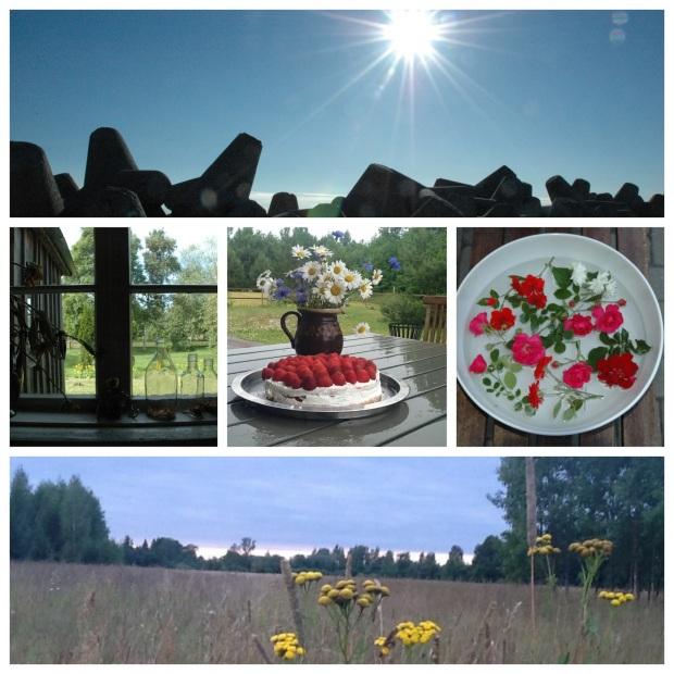 Collage_Midsummer